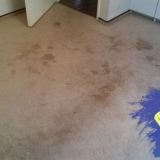 Carpet Cleaning Before 1